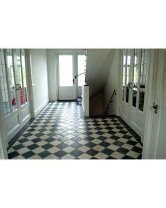 Vloertegel Wit marmer 20x20x1